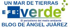 El Blog de Ángel Juárez en Efeverde